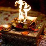Saffron for Rituals